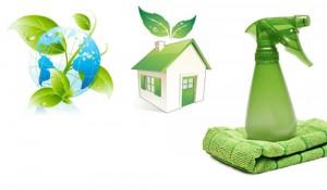 Limpiadores Ecologicos