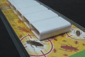 Ideas de Negocios: Veneno para Cucarachas