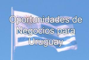 oportunidades de negocios Uruguay