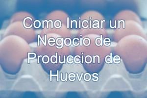 producción de huevos