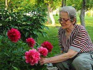 jardinerina ancianos