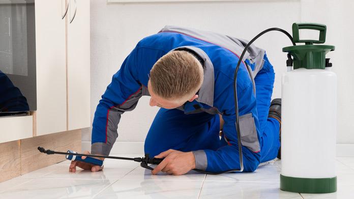 Cómo iniciar un servicio de control de plagas